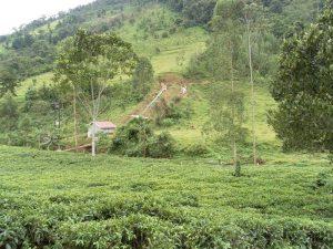 Kleinkraftwerk Bwindi Uganda